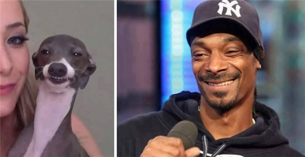 Nụ cười Snoop Dogg quả là không lẫn đi đâu được.