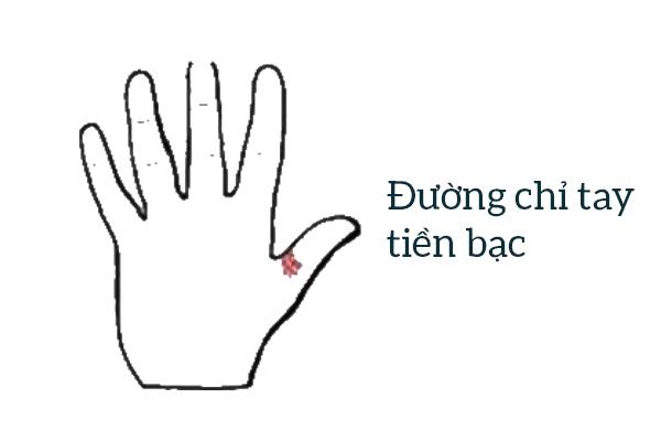 4 đường chỉ tay đặc biệt hiếm có khó tìm không phải ai cũng có