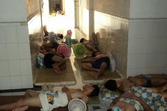Trời nóng quá, cả lũ nằm la liệt như thế này đây.