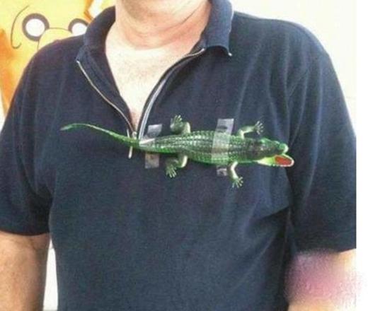 Phải thế này thì mới đúnglà áo thun cá sấu chính hiệu.