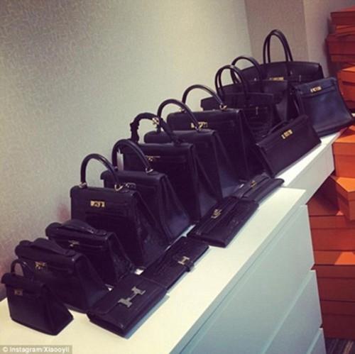 Bộ sưu tập túi xách hàng hiệu.