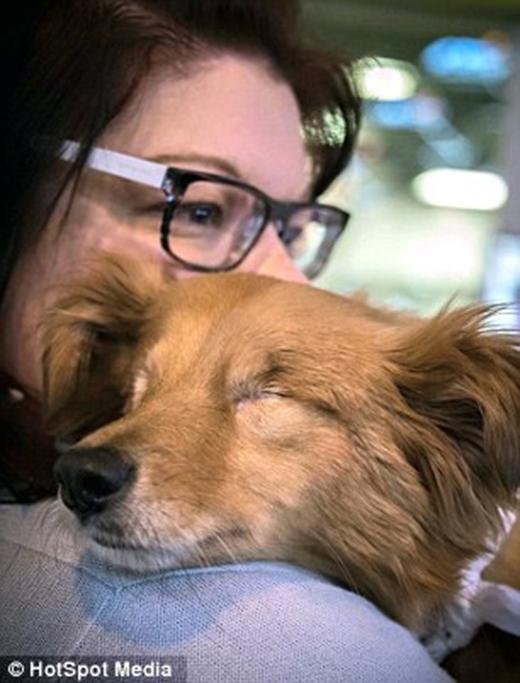 Nymđược giao choSian Rachel Porter – một người đã có kinh nghiệm trong việc chăm sóc những chú chó mù. (Ảnh: Internet)