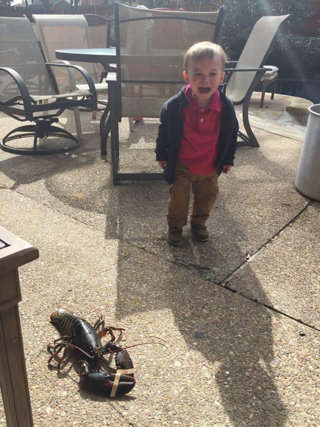 Ổng muốn bắt con tôm đó về nuôi mà bố không cho.
