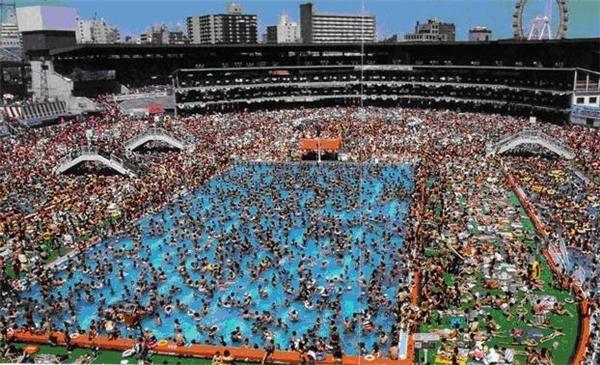 Một bể bơi bị quá tải. (Ảnh: Internet)