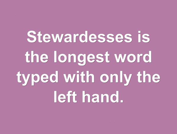 """#5 """"Stewardesses"""" (nữ tiếp viên hàng không) là từ tiếng Anh dài nhất mà chỉ cần dùng tay trái để gõ hết các chữ cái.(Ảnh: Internet)"""