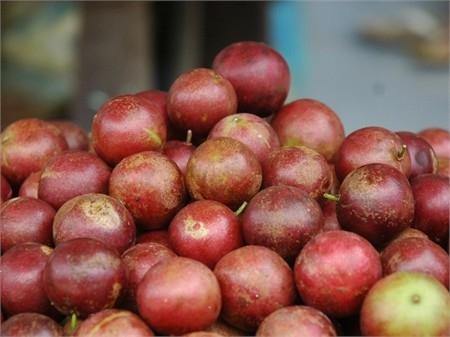 Có ai còn nhớ cách ăn quả hồng quân sao cho không bị chua không nè? (Ảnh: Internet)