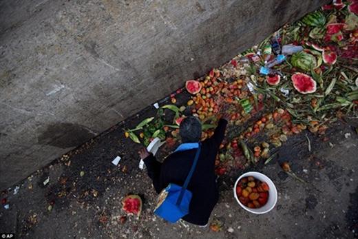 Ngay cả những người thuộc tầng lớp trung lưu cũng phải đi kiếm đồ ăn ở thùng rác. (Ảnh: Internet)
