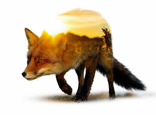 Kẻ khôn ngoan luôn thận trọng trong thời khắc giao thoa giữa ánh sáng và bóng tối.