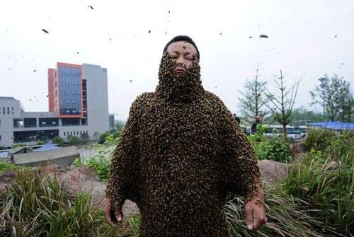 Anh She Ping, người nuôi ong ở Trung Quốc đã xác lập nhiều kỉ lục về việc phủ ong lên người. Anh nhiều lần đã tự phá kỉ lục của mình, lần gần nhất chính là vào năm 2012 với 32,85 kg ong tương đương 331,000 con ong bu khắp cơ thể. (Ảnh: Internet)