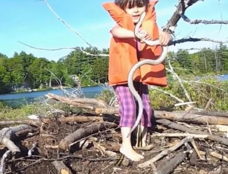 cô bé bắt rắn