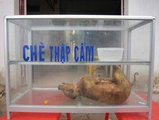 """Cái này có thể được đổi thành """"Treo biển chè bán thịt chó""""...(Ảnh: Internet)"""
