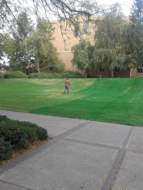 Tuy nhiên, sơn cỏ thế nào mà lại để bị người ta bắt quả tang thế này?