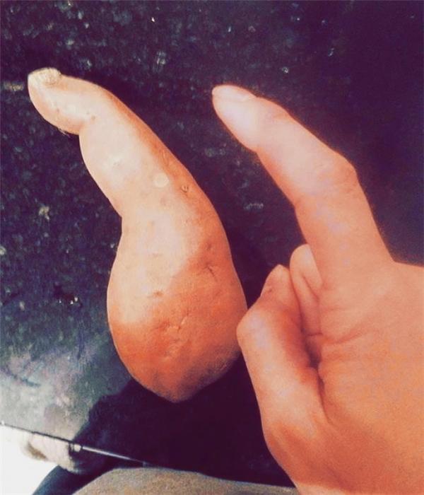 Ngón trỏ phiên bản cà rốt... (Ảnh: Internet)