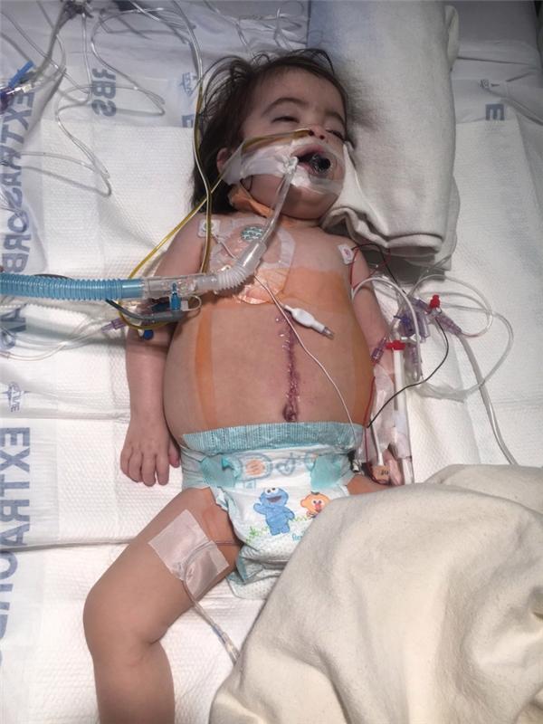 Thật may mắn vì thận của người cha phù hợp với Maddy, nên cuộc phẫu thuật cấy ghép đã được tiến hành. (Ảnh: Internet)