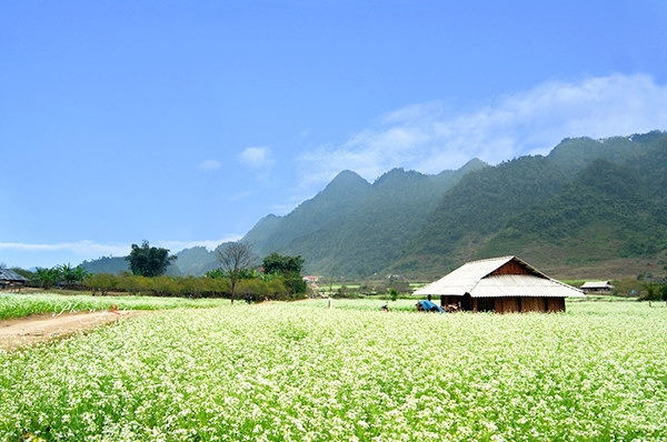 Tour Bắc Ninh - Mộc Châu