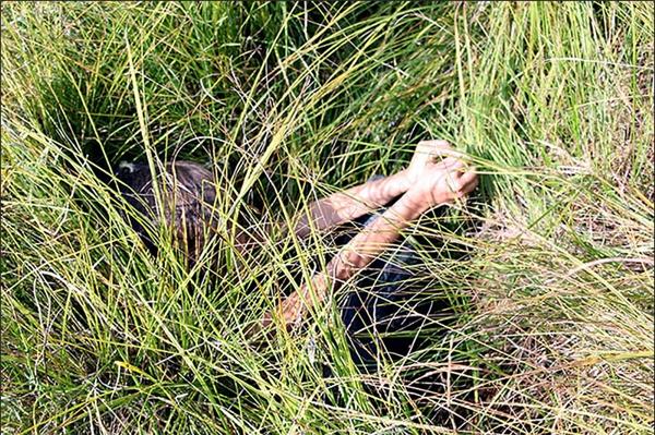 Cô bé được tìm thấy trong một ụ cỏ trong khu rừng lạnh lẽo.