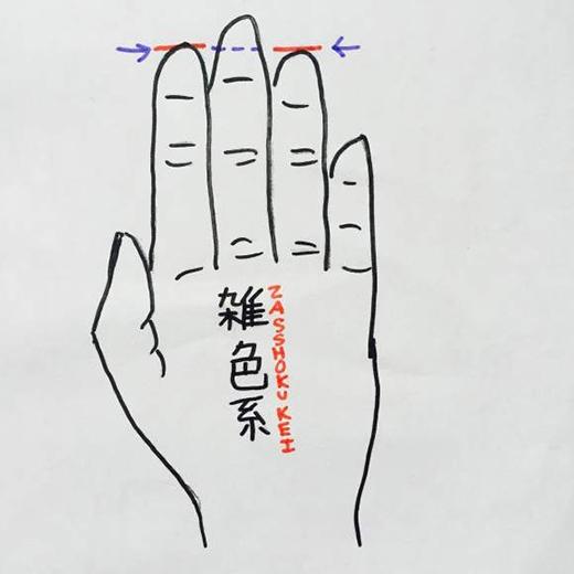 Ngón trỏ và ngón đeo nhẫn bằng nhau. (Ảnh: Internet)