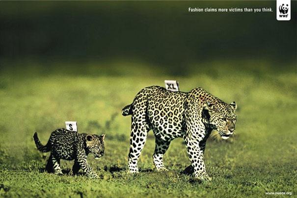 Tất cả mọi loài vật sinh ra đều có quyền sống chứ không phải chỉ là một công cụ để con người thỏa mãn đam mê về thời trang.