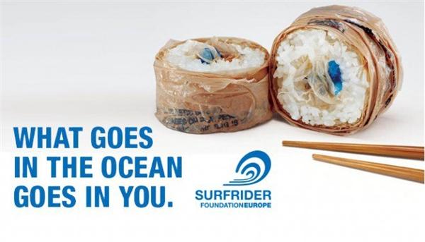 Thứ gì đi xuống biển cũng sẽ quay trở lại cơ thể bạn.