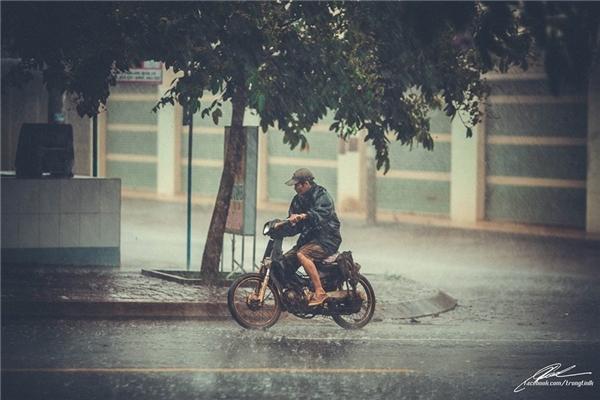Mưa hối hả, người Sài Gòn cũng vội vã. (Ảnh: Lưu Khúc)