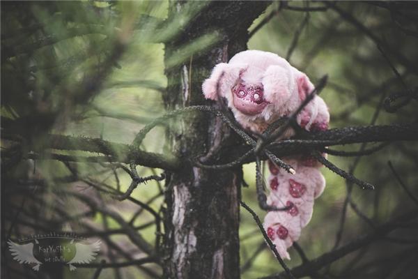 """Con sâu """"quái vật"""" to gần bằng thân cây...(Ảnhkatyushka)"""