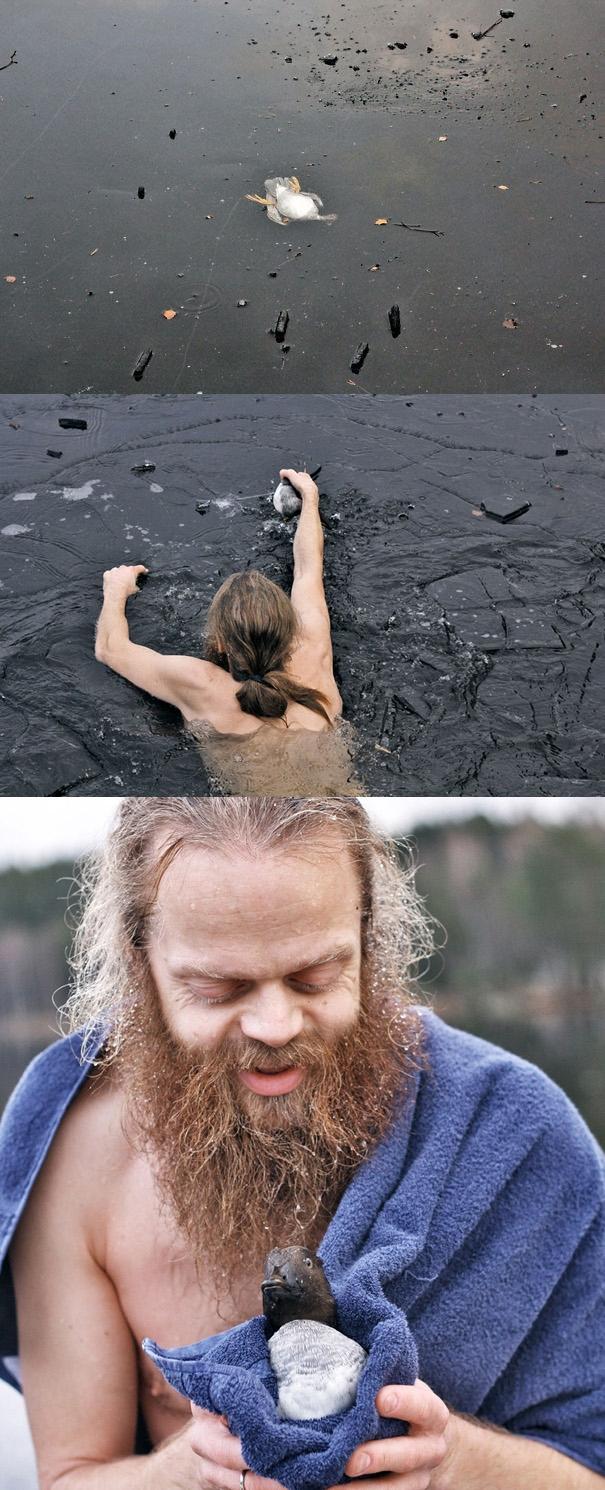 Một chú vịt bị mắc kẹt giữa dòng nước đóng băng giá lạnh ở Na Uy, và người đàn ông này không ngần ngại lao tới cứu mạng nó.