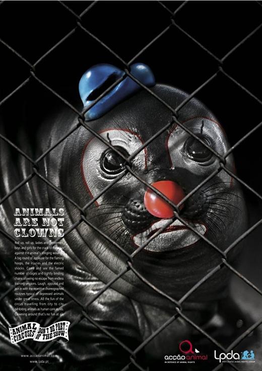 Rất nhiều tổ chức bảo vệ động vật đã lên án những gánh xiếc thú.