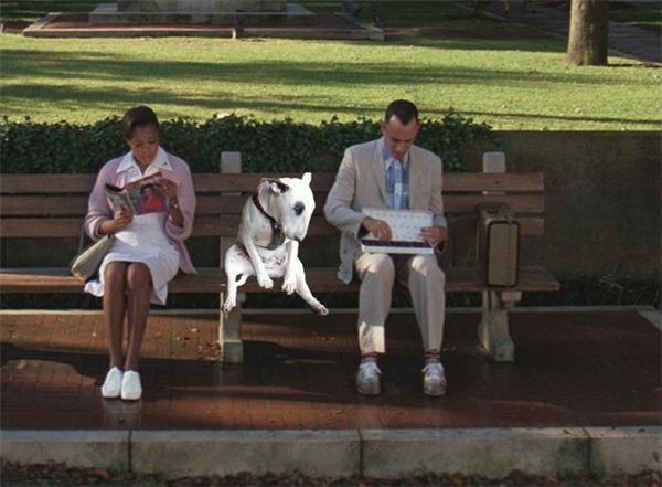 Gia đình rủ nhau đi chơi công viên, thân ai người nấy chơi.