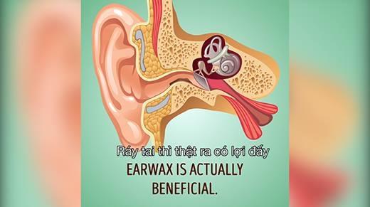 Hóa ra bấy lâu nay, ráy tai với tăm bông là sai lầm!