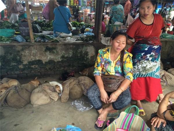 Một hàng thịt chó trong chợ (Ảnh: HSI)