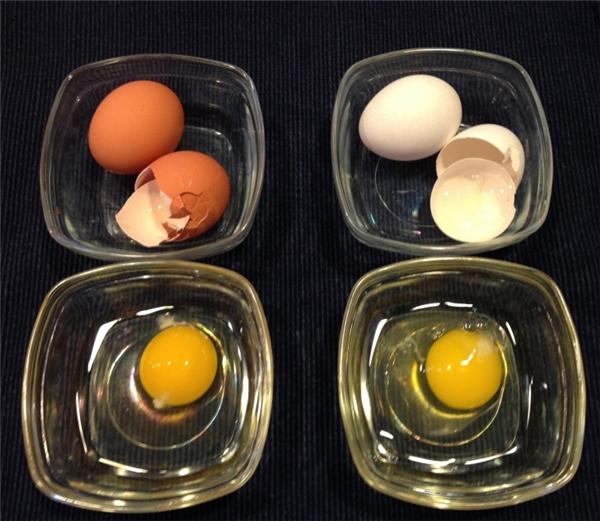 Màu sắc vỏ trứng không ảnh hưỡng đến chất lượng dinh dưỡng của trứng.