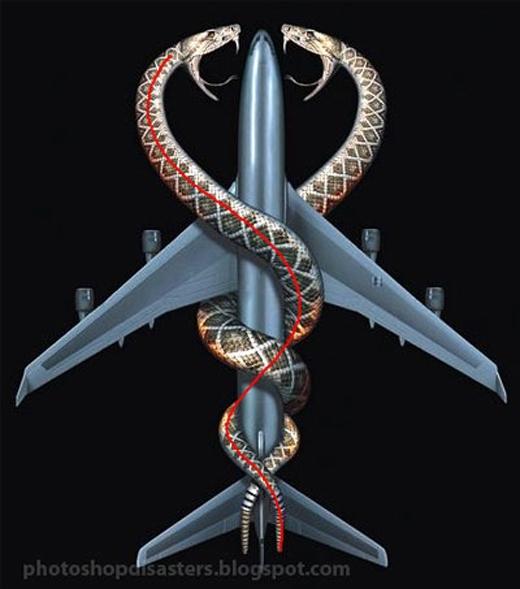 Snakes on a Plane (2006): Khúc thân nào là của con rắn nào?