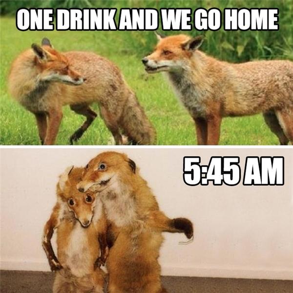 """""""Tối nay mình chỉ uống 1 li thôi…"""".(Ảnh: Internet)"""