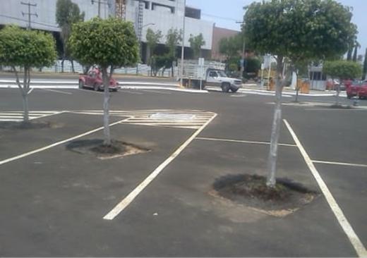Bãi đỗ xe với dụng ý... khuyến khích người dân hạn chế đi xe mà thay vào đó, hãy trồng cây xanh nhiều vào.
