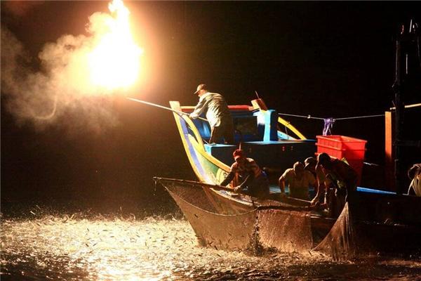 Từ thời cổ xưa người dân Nhật Bảnđã biết cách sử dụng ánh sáng và chim cốcđể giúp họ công việc bắt cá.