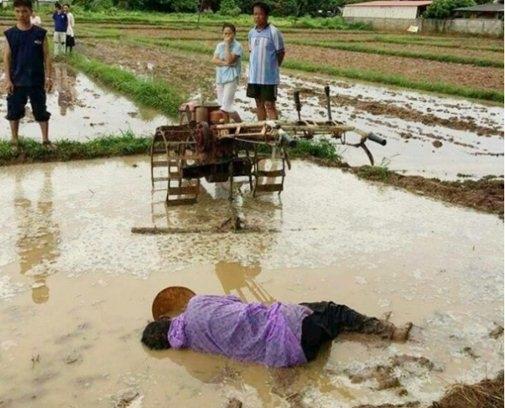 Hình ảnh người cha nằm chết trên thửa ruộng vì kiệt sức khiến nhiều người xót xa. Ảnh: Internet
