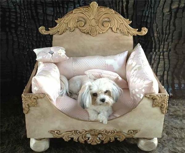 """""""Ai thèm cái giường hoàng gia đó chứ, ghế cung đình còn sang chảnh hơn đây này"""". (Ảnh Internet)"""