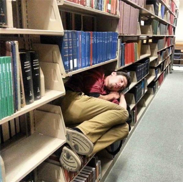 Thấy trốn trong thư viện suốt ngày, tưởng đâu chăm học lắm cơ.