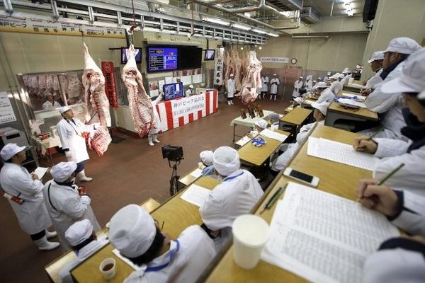 Mỗi nămchỉ xẻ thịt3000 con bò Kobe và quá trình này phải thực hiện ngay tại khu vực chăn nuôi.