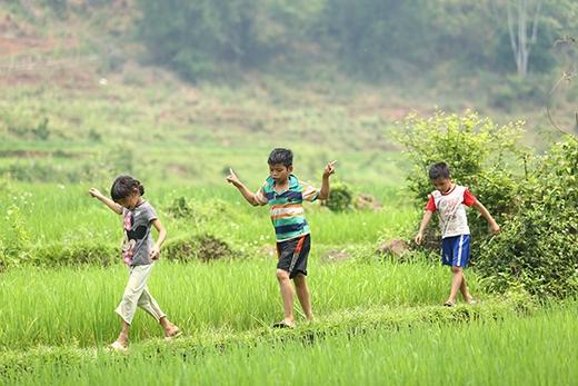 Sự hồn nhiên, ngây thơ của các em bé vùng cao giữa đồng ruộng bao la.