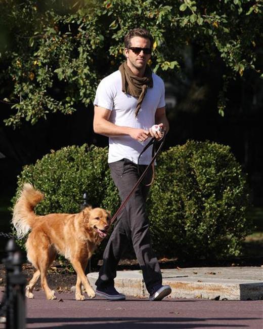Ryan Reynolds đóng bộ đơn giản trong khi dắt chó cưng đi dạo, chỉ khác là anh quấn thêm một chiếc khăn quàng tối màu làm phụ kiện mà thôi.