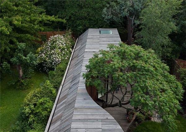"""Đến mái nhà cũng phải uốn mình chiều theo """"tạo hóa""""."""