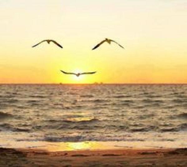 Nụ cười hiền hòa chào ban mai. (Ảnh: Internet)