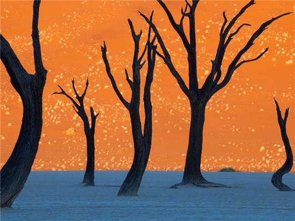 Sossusvlei nằm ở phía namsa mạc Namib (Namibia).Nó là một chảo đất sét mặn đượcbao quanh bởi những cồn cát đỏ.Sossusvlei nằm trong số những cồncát cao nhất trên Trái đất. Đến vớiDeadvlei, du khách sẽ được chiêm ngưỡng một trong những cảnh sắc rực rỡ nhất thế giới. Màu đỏ của cồn cát tự nhiên kết hợp vớimàu trắng ở chảo đất sét nổi bật dướibầu trời xanh ngắt và điểm xuyến thêm một vàithân cây đen thui trơ trọi tạo thànhbức tranh mê hoặc đếnlạ.