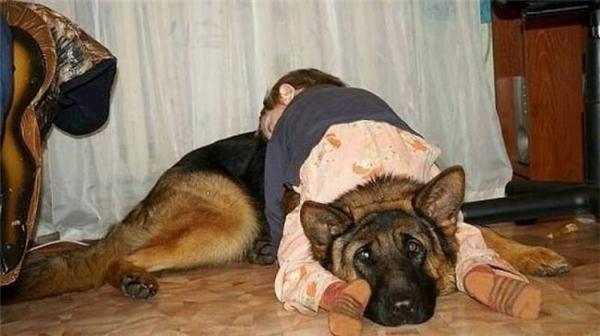 """""""Ahuhu đau cổ ghê! Cậu chủ ngủ say quá không dám nhúc nhích luôn""""."""