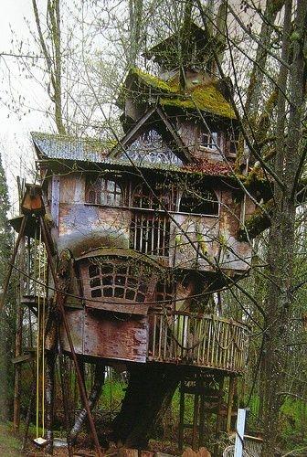 Căn nhà này hẳn đã bị bỏ hoang cả chục năm rồi.