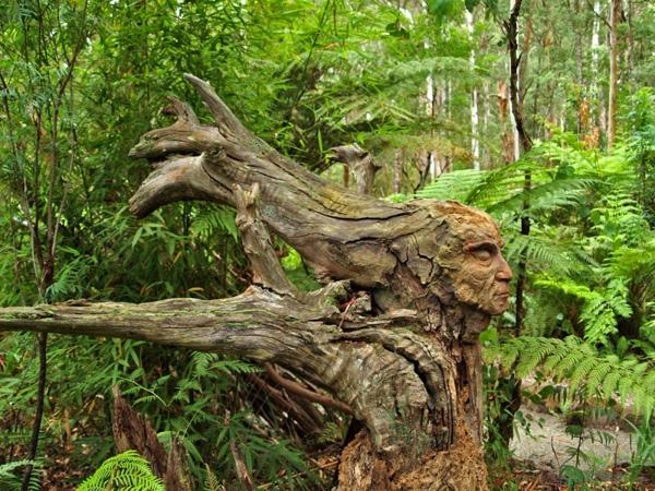 Đây là bức điêu khắc trên một thân cây của nhà điêu khắc Bruno Torfs.