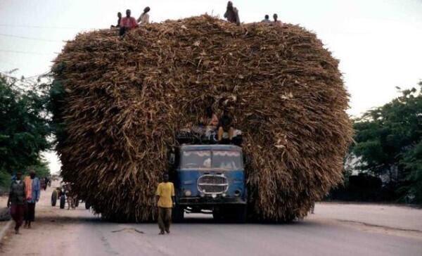 Kích thước hàng hóa chắc phải to gấp 3 lần chiếc xe tải.