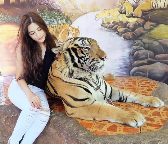 Kingkaew Karnthiang còn là một cô gái yêu động vật.