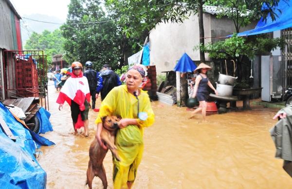 Tại các xã khác của huyện như Quang Kim, Cốc San, hàng trăm hộ dân bị ngập úng, một số được sơ tán đến nơi trạm trú. Ở xã Bản Quan, một cầu dân sinh bị sập và 5 ha ngô bị ngập. Toàn bộ huyện mất điện, mất liên lạc do không có sóng điện thoại. Ảnh: Internet